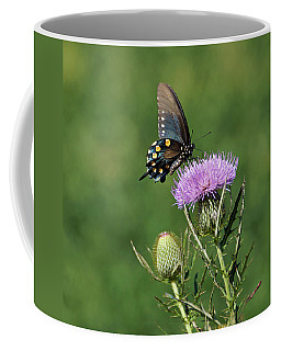 Coffee Mug featuring the photograph Pipevine Swallowtail by Sandy Keeton