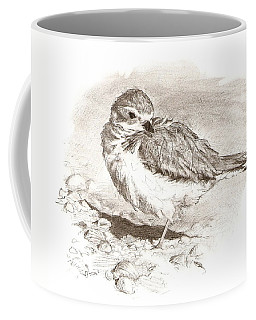 Piping Plover Coffee Mug