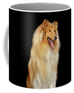 Collie On Black Coffee Mug