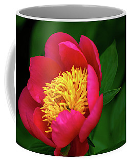 Pistil Delight  Coffee Mug