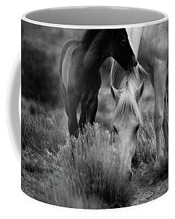 Coffee Mug featuring the photograph Placitas 2 by Catherine Sobredo