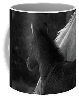 Coffee Mug featuring the photograph Placitas 9 by Catherine Sobredo