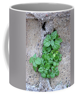 Plant In Stone Naples Italy Coffee Mug