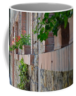 Plants In Windows Coffee Mug