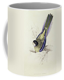 Platycercus Brownii, Or Browns Parakeet Coffee Mug