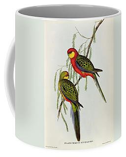 Platycercus Icterotis Coffee Mug