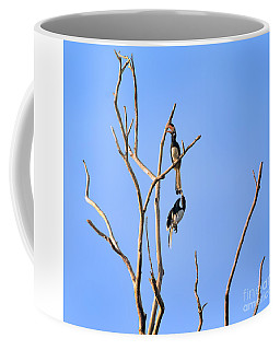 Play Time Hornbills Coffee Mug
