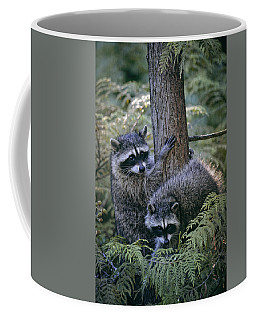 Playing In The Woods Coffee Mug