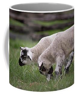 Playing Lambs Coffee Mug
