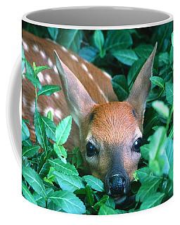 Playing Peekaboo Coffee Mug