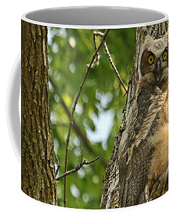 Coffee Mug featuring the photograph Pleasantly Surprised  by Heather King