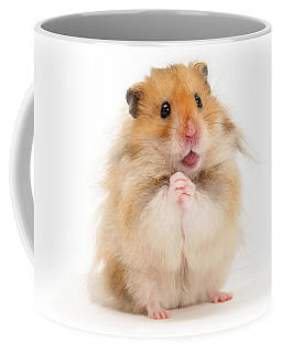 Please Be Mine Coffee Mug