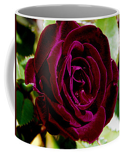 Plum Velvet Rose Coffee Mug by Samantha Thome