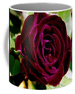 Plum Velvet Rose Coffee Mug