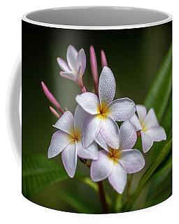 Plumeria 1 Coffee Mug