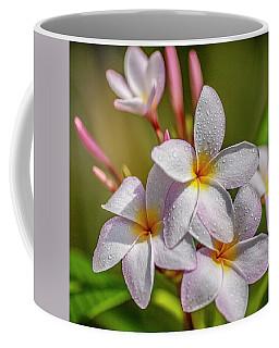 Plumeria 2 Coffee Mug