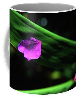 Plumeria Flower Petal On Plumeria Leaf- Kauai- Hawaii Coffee Mug