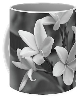 Plumeria Flowers Coffee Mug