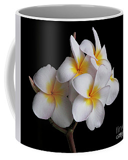 Coffee Mug featuring the photograph Plumeria by Mariarosa Rockefeller