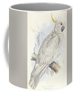 Plyctolophus Galeritus. Greater Sulphur-crested Cockatoo. Coffee Mug