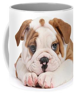 Po-faced Bulldog Coffee Mug