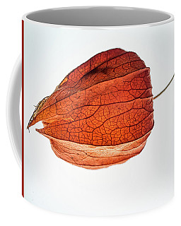 Pod Bird Coffee Mug
