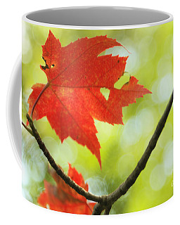 Coffee Mug featuring the photograph Poesie D'automne  by Aimelle