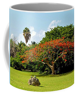 Poinciana Coffee Mug