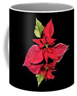 Poinsettia Reflection  Coffee Mug