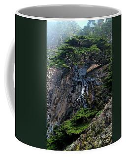 Point Lobos Veteran Cypress Tree Coffee Mug