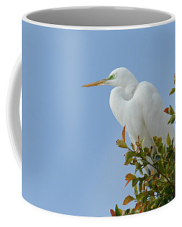 Coffee Mug featuring the photograph Poised 2 by Fraida Gutovich