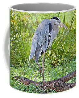 Poised And Focused Coffee Mug by Judy Kay