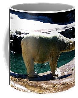 Coffee Mug featuring the photograph Polar Bear 3 by Rose Santuci-Sofranko