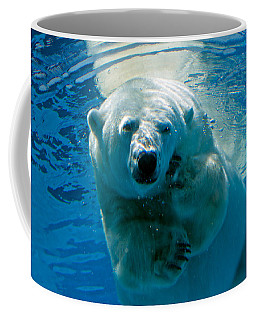 Coffee Mug featuring the photograph Polar Bear Contemplating Dinner by John Haldane