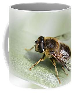 Pollen Dusted Coffee Mug