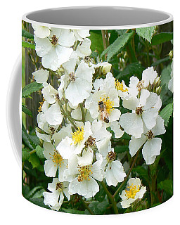 Coffee Mug featuring the photograph Pollenation by Pamela Patch