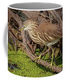 Pond Heron With Fish  Coffee Mug