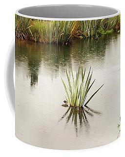 Pond Reflections Coffee Mug