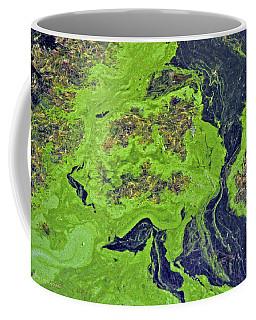 Pond Scum Coffee Mug