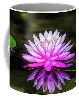 Pond Water Lily Coffee Mug
