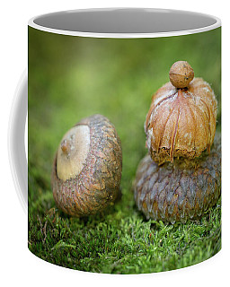 Coffee Mug featuring the photograph Pondering With Nature by Dale Kincaid