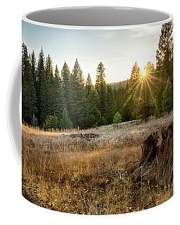 Ponderosa Sunset Coffee Mug
