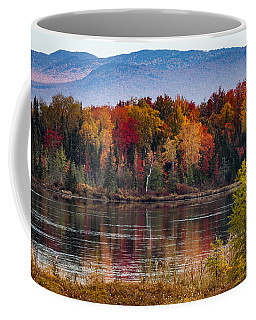 Pondicherry Fall Foliage Reflection Coffee Mug
