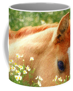 Stallion Coffee Mugs