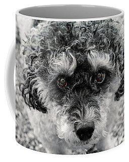Poodle Eyes Coffee Mug