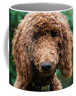 Poodle Pup Coffee Mug
