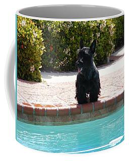 Pool Daze Coffee Mug