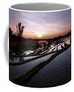 Pools Of Rice Coffee Mug