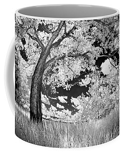 Poplar On The Edge Of A Field Coffee Mug
