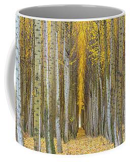 Poplar Tree Farm In Boardman Oregon In Fall Closeup Coffee Mug